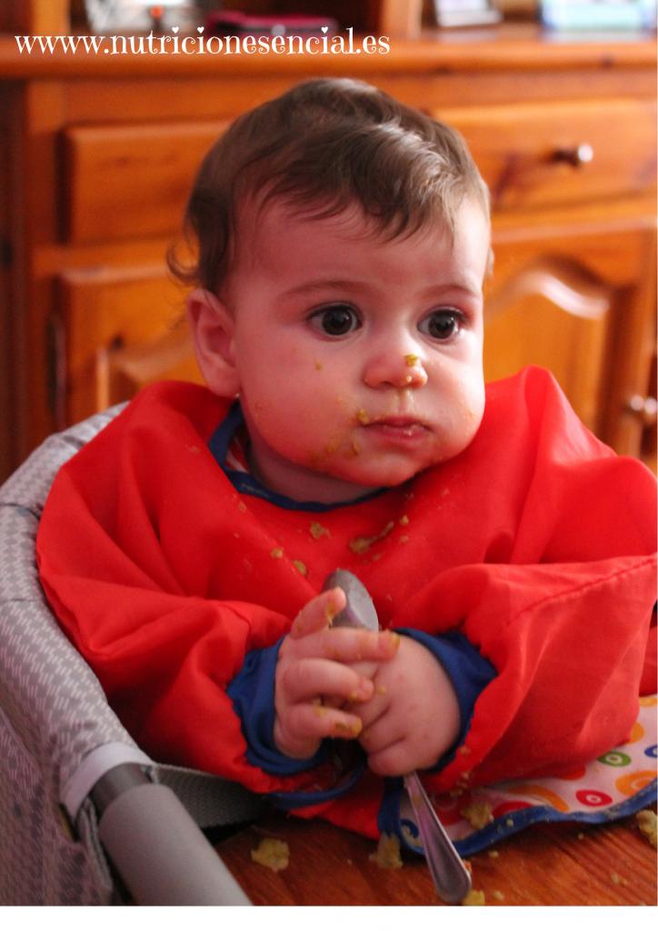 www.nutricionesencial.es (4)
